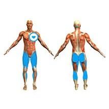 elliptique-coach-mp3-jambes-fessiers-p3-n1-f2