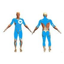 body-coach-mp3-dessinez-tout-votre-corps-p1-n1-f2