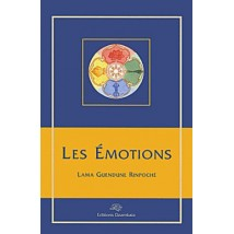 les-emotions