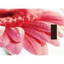 carte-postale-encens-fleur-serie-ecologie