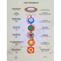 planche-chakras