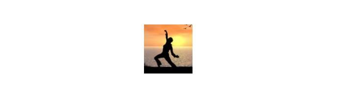 Qi Gong & Arts martiaux