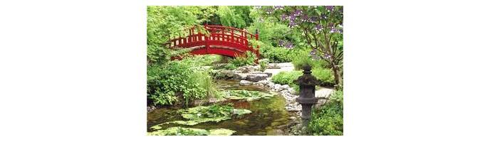 Relaxation pratique du Zen